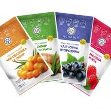 Чай-концентрат фруктовый с мёдом АССОРТИ №4: Имбирь, Облепиха, Cмородина, Малина от 24 пакетов ТМ Аскания